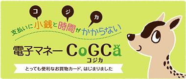 コジカ ホームページ